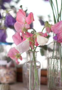 sweetpea-bunch-7402